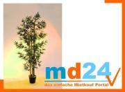 bambus_dicke_naturstaemme_1380blt__205cm.jpg
