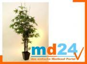 bambus_dunkelstammzementtop2334bl240cm.jpg